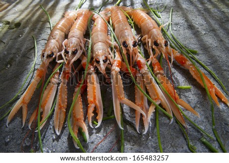 Marine Product Presentation And Preparation Of The Crayfish - stock photo