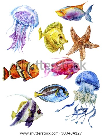 Marine set of watercolor tropical fish and jellyfish on a white background. Underwater isolated watercolor illustration - stock photo