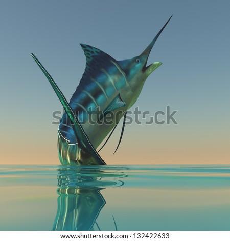 Marlin Sport Fish -  - stock photo