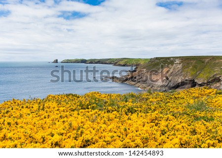 Marloes and St Brides bay West Wales coast near Skoma island.  If you miss the ferry to the island these views are found on the walk on the mainland - stock photo