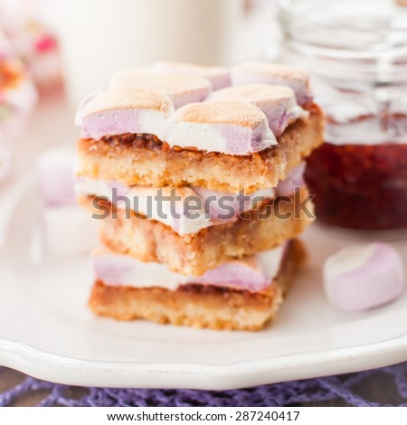 Marshmallow and Raspberry Jam Slice, square - stock photo