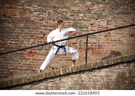 Martial artist in fighting stance in front of a brick wall - stock photo