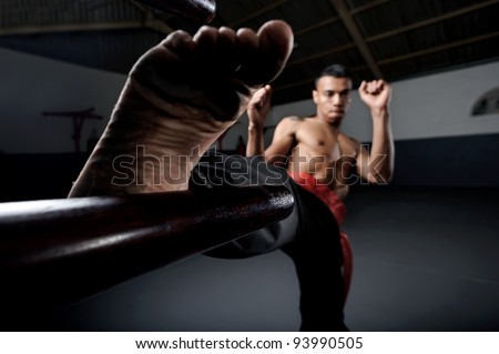 Martial arts training in Wing Chun Kung Fu style on a wooden dummy in the training gym or dojo - stock photo