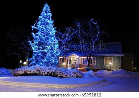 Marvelous Christmas tree in blue lights - stock photo
