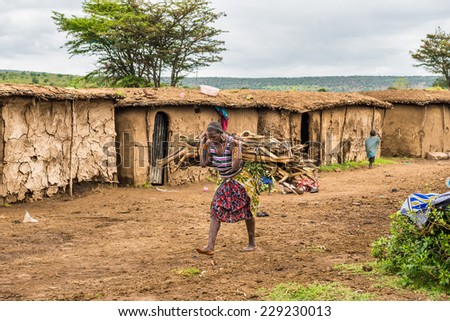 MASAI MARA, KENYA - OCTOBER 17, 2014: African woman from Masai tribe carrying a bunch of wood in her village. The Maasai are a Nilotic ethnic group living in southern Kenya and northern Tanzania - stock photo