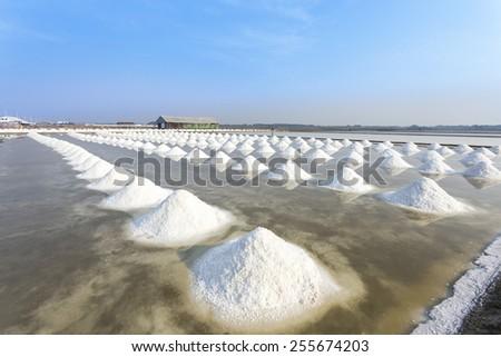 Mass of salt in the salt sea farm - stock photo