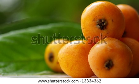 Mature and flavorful Loquats. - stock photo