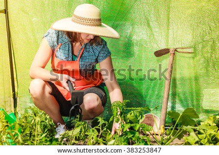 Mature farmer woman with gardening tool working in her garden greenhouse - stock photo
