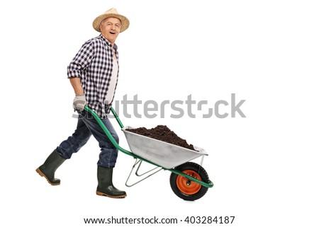 Mature gardener pushing a wheelbarrow full of dirt isolated on white background - stock photo