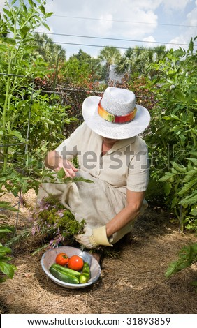 Mature woman in straw hat and linen dress working in her garden. Movement blur on arm holding rosemary. - stock photo
