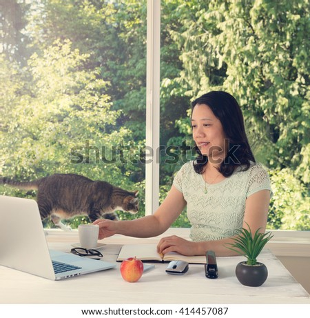 Mature woman working at home with cat and large daylight window in background. Light haze effect applied to image.  - stock photo