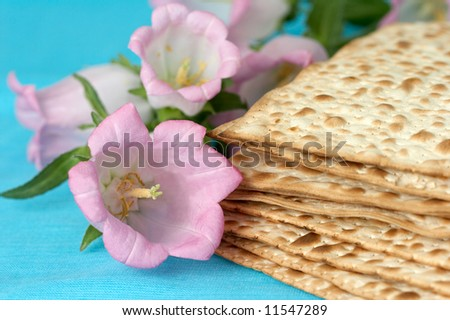 matzo. jewish passover bread with flowers. very shallow DOF - stock photo