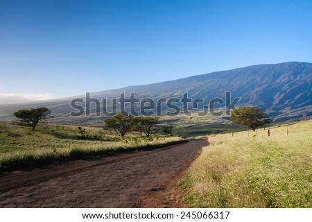 Maui Road - stock photo