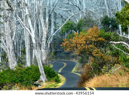 Mauna Loa strip road winds and curves up the gentle slopes of this volcano.  Pavement clings to each movement. - stock photo