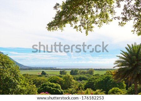 Mauritius island nature   - stock photo