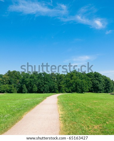 Meadow Background Perspective - stock photo