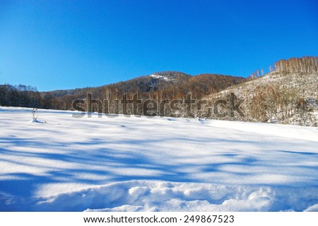 Meadow covered with snow in the mountains in winter. - stock photo