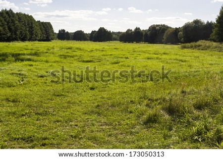 Meadow in Brandenburg, Germany - stock photo