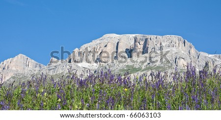 Meadow in front of the rock massif of the Sella group - stock photo