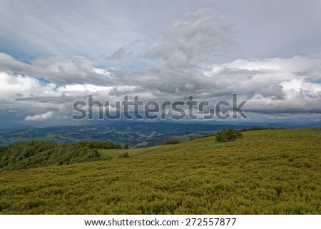 Meadow in the mountains. Mountain landscape. - stock photo