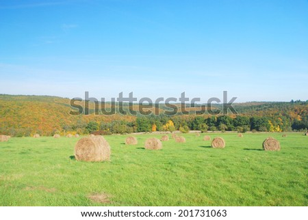 Meadow with bales of straw and autumn forest - stock photo