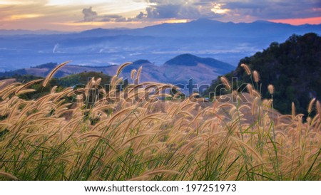 Meadows in the foreground and big mountain in the background, Nan, Thailand  - stock photo