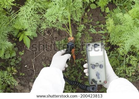 Measuring radiation levels of vegetable - stock photo