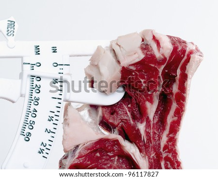 Meat and fat calipers, concept diet, health, fat - stock photo