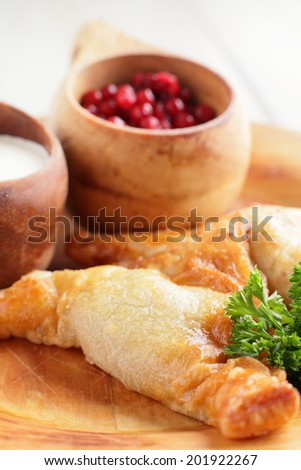 meat pie with sour cream and cranberries on wooden plate - stock photo