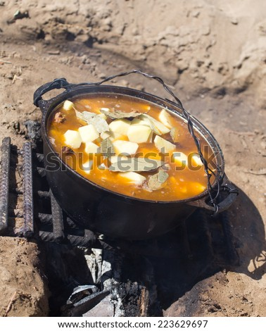 meat with potatoes in a cauldron on fire - stock photo