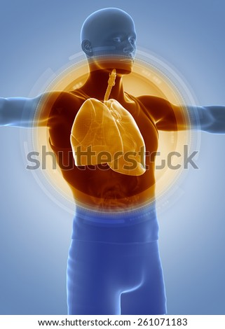 Medical anatomy scan respiratory system - stock photo