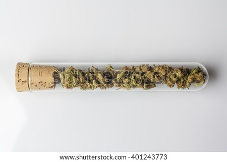 Medical cannabis buds in glass test tube closed with cork on white background from above - stock photo