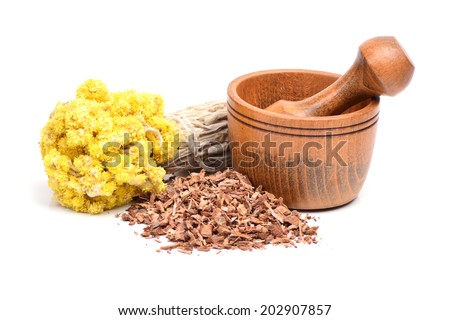 Medical herbs - stock photo