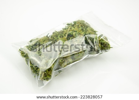 Medical marijuana isolated on white background. Therapeutic and medicinal cannabis plastic bag - stock photo