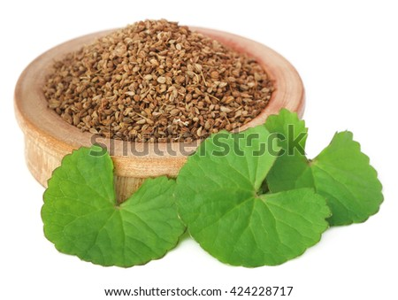 Medicinal combination of ajwain seeds in a wooden bowl with thankuni leaves - stock photo