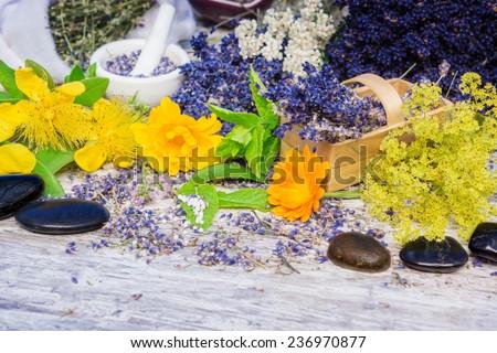 Medicinal herbs, globules, Bach flower remedies, healing stones - stock photo