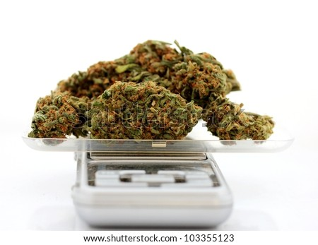 Medicinal marijuana on a scale - stock photo