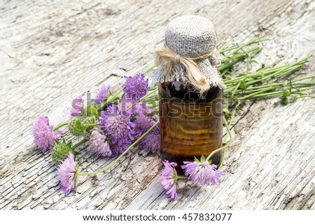 Medicinal plant Knautia arvensis, commonly known as field scabious and brown pharmaceutical bottle on old wooden table. Used in herbal medicine, is a major source of nectar. Selective focus  - stock photo