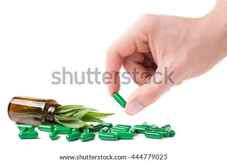 Medicine herb. Herbal pills in hand, palm, fingers with healthy medical plant. Green leaf, alternative drug. Natural pharmaceutical capsule. Vitamin supplement for care, medication - stock photo