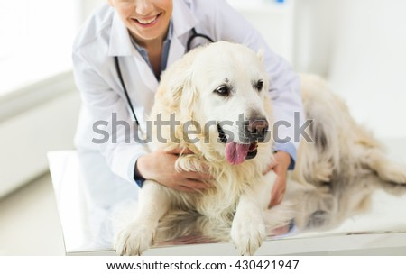 medicine, pet, animals, health care and people concept - close up of happy veterinarian or doctor with golden retriever dog at vet clinic - stock photo