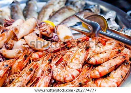 Mediterranean food portions/Mediterranean food - stock photo
