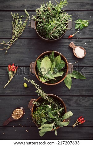 Mediterranean herbs and  ingredients: rosemary, thyme, sage, salt, oregano - stock photo