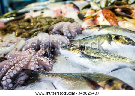 Mediterranean octopus and other seafood in the Greek market - stock photo