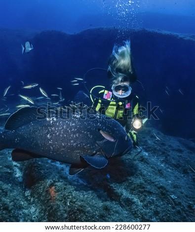Mediterranean Sea, Corsica, Lavezzi, diver and grouper (Epinephalus guaza) - FILM SCAN - stock photo