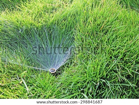 Medium view of small water sprinkler embedded in grass lawn - stock photo