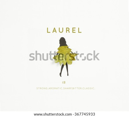 Meet Laurel ! A woman's silhouette wearing a dress of laurel leaves on white background. - stock photo