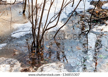 melting snow in forest in early spring - stock photo