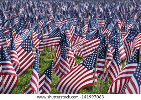 Memorial Day Zoom - stock photo