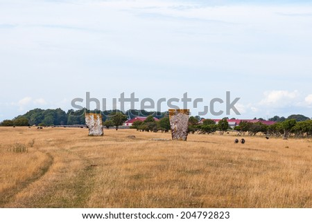 Memorial stone in a meadow on Oland in Sweden - stock photo