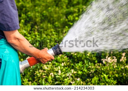 men hand watering the plants - stock photo
